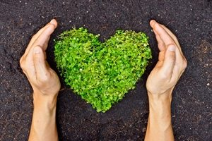 Sustainable initiatives provide returns. Investors are certainly listening to that.