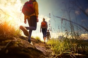 The backpacker tax was introduced  on 1 January 2017.