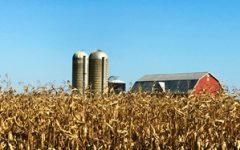 What makes farm accounting unique?